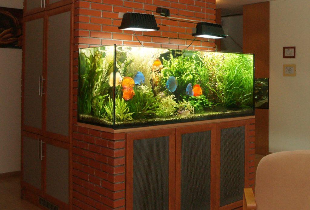 Zobacz Słoneczny apartament z systemem KNX - Inteligentny Dom Mieszkanie 80m2 Automatyczne akwarium 1024x693